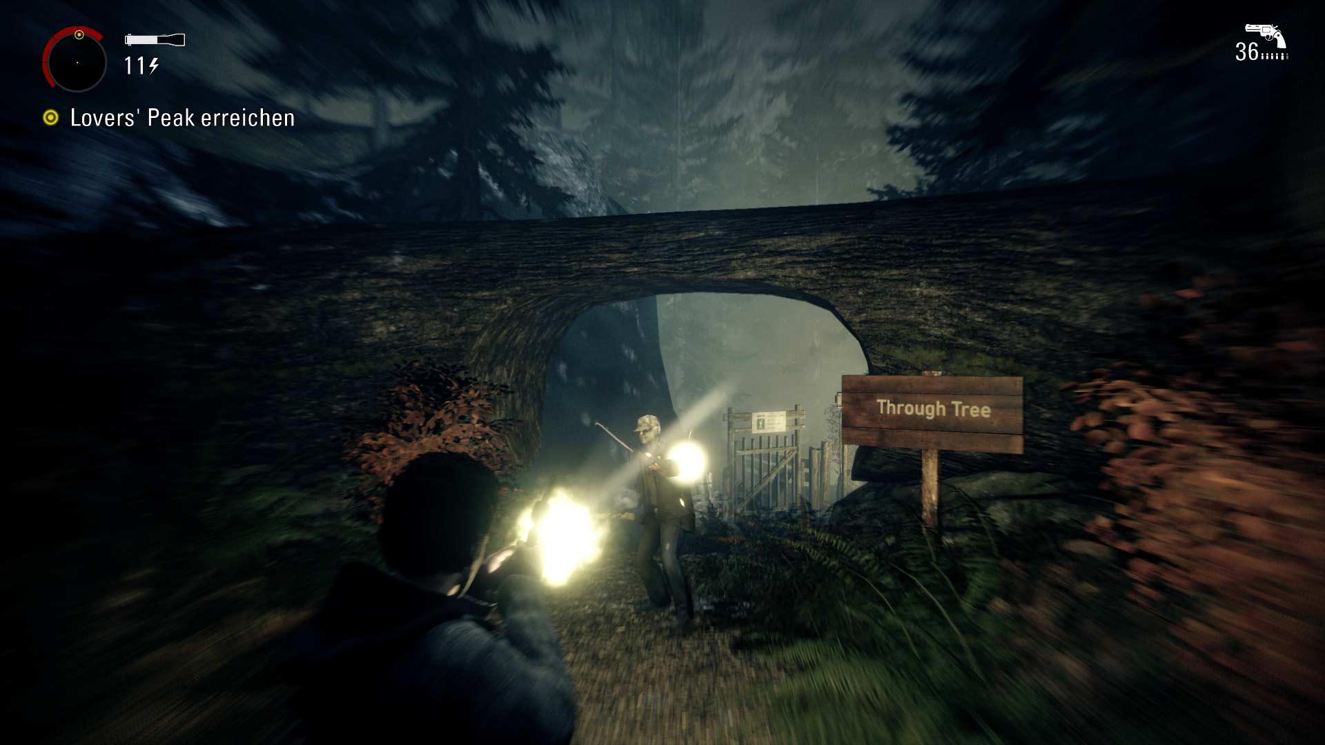 Alan Wake Remastered - Wald